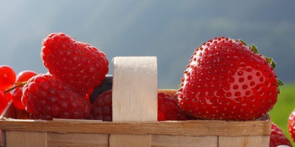 Braunes Schokoladenmousse mit marinierten Erdbeeren