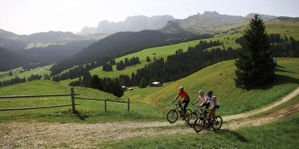 Packende Mountainbike-Touren in der Almenregion