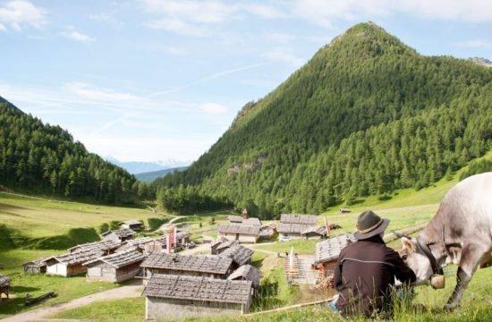 pension-sonnenhof-maranza-rio-di-pusteria  (11)