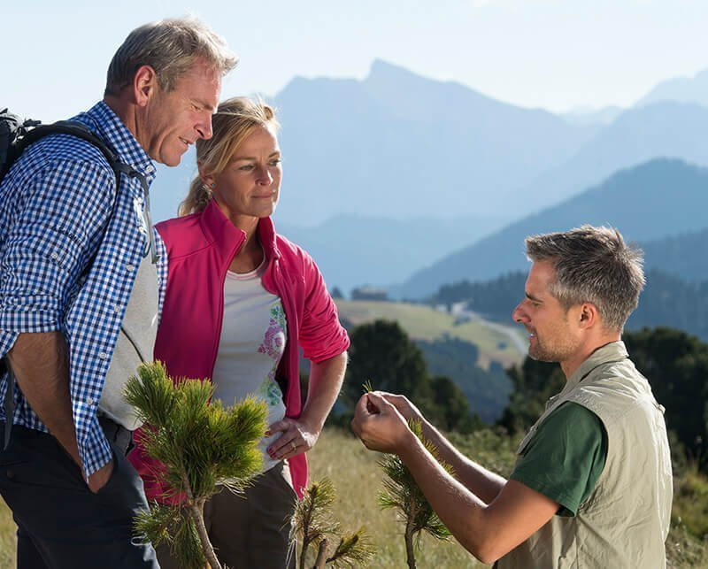 Wanderparadies am Fuß des Gitschberges