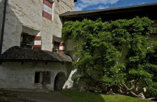 Castle of Rodengo (1)