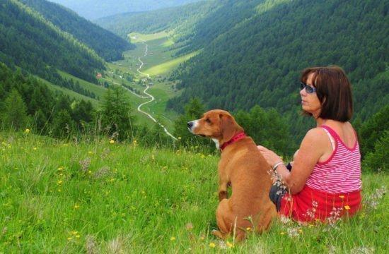 Urlaub mit Ihrem Hund in den Bergen!