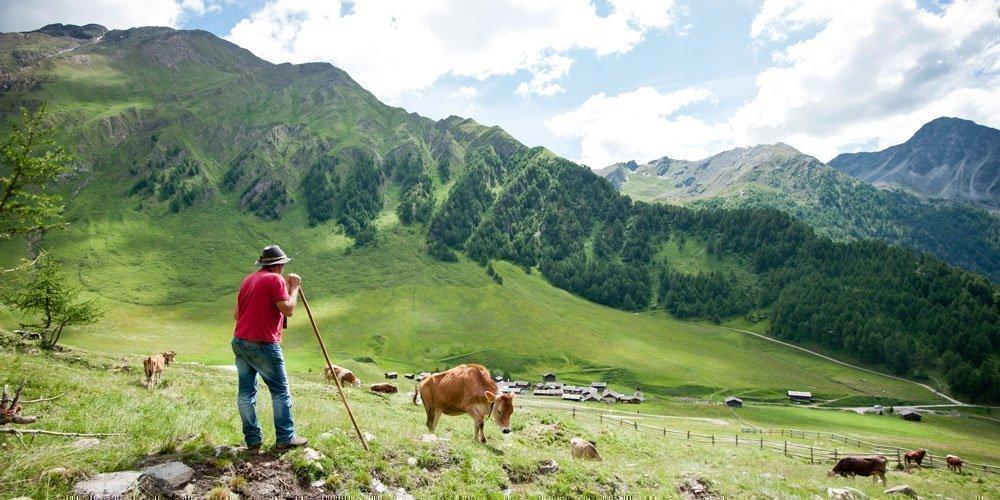Hochalpine Gipfelerlebnisse beim Wandern in Meransen/Gitschberg
